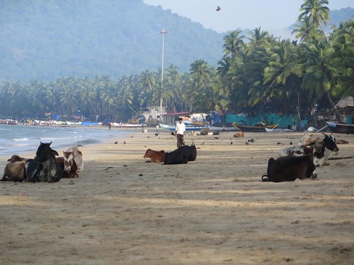 Canacona, Goa / Foto Mónica