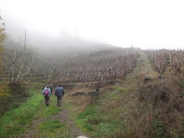 ruta de senderismo Castro Candaz