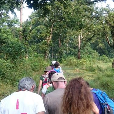 Trekking por la selva
