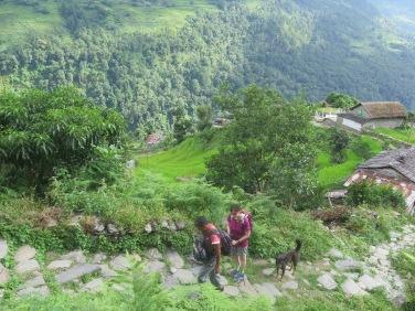 Escaleras circuito Annapurnas