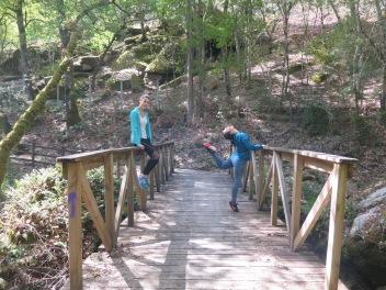 Puente hacia O Covelo, Partovia