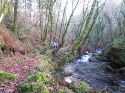 andaina río Ribadil