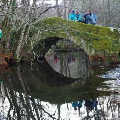 Ponte Noceifas